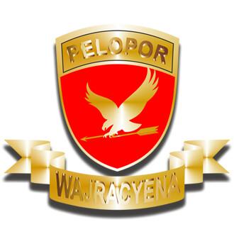 Pelopor